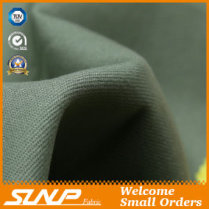 Fashion Cotton Woven Apparel Fabric