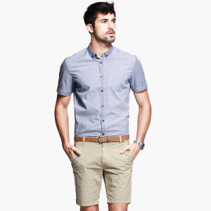 Shirt with Button Down Collar 100% Men Cotton Shirts Slim Fit Dress Shirt pictures & photos