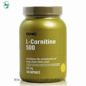 l-carnitine 3000mg to lose weight