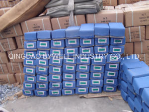 """Zinc Galvanized Roofing Nails with Umbrella 8g-13G (1"""", 1.75"""" 2""""2.5"""" 3"""") pictures & photos"""
