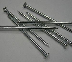 Steel Nails (OK-1710)