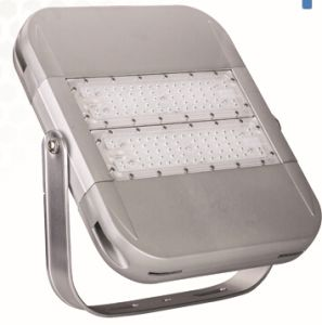 Philips LED Flood Light Outdoor 80W LED Flood Light pictures & photos