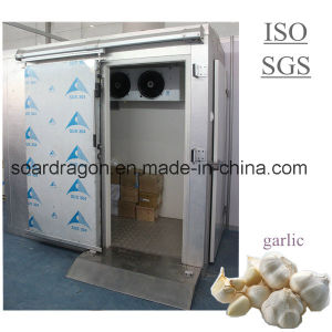 Walk in Cold Room for Garlic with Ce and ISO pictures & photos