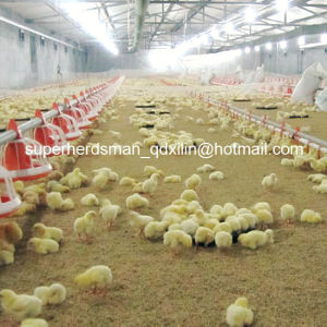 Full Set Automatic Poultry Feeder and Drinkers for Chicken pictures & photos