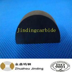 Tungsten Carbide Tip for Greenteeth pictures & photos