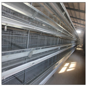 Farm Poultry Equipment Layer Cage for Egg Chicken pictures & photos