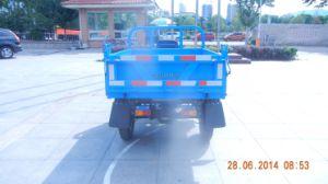 Waw Three Wheel Vehicle pictures & photos