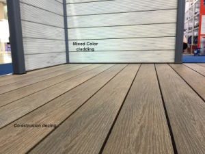 Co-Extrusion WPC Decking, WPC Flooring pictures & photos