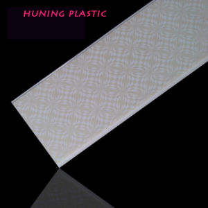 Clear Plastic Wall Panel (P20-10) pictures & photos