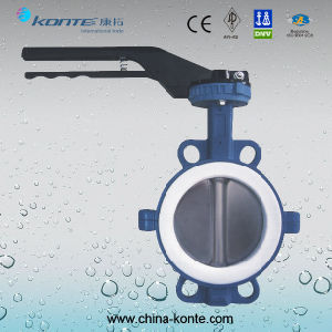 D71f-16c/P/R High Performance PTFE Half Line Butterfly Valve pictures & photos