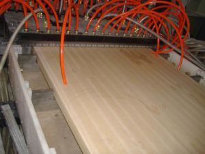 WPC Extrusion Production Line pictures & photos
