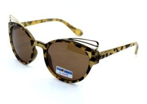 The New Design Sunglasses (Z0009) pictures & photos