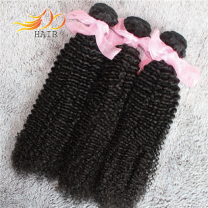 Wholesale 8A Virgin Indian Hair Kinky Curl Natural Color Hair Weave pictures & photos