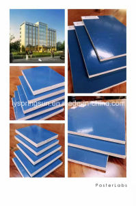 Linyi PVC Coated Plastic Plywood for Construction pictures & photos