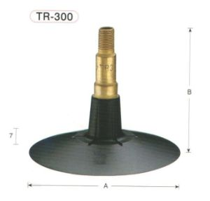 Passenger Car and Light Truck Tube Valve (TR-300) pictures & photos