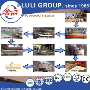 Keruing/Gurjan Plywood for India Market pictures & photos