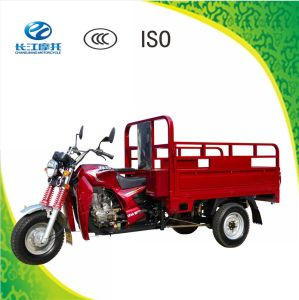 China Newly Developed Three Wheel Gas Motor Vehicle for Adult