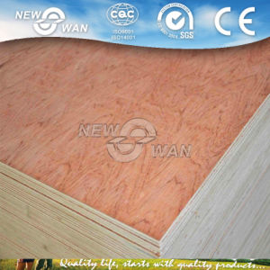 Plywood Door Skin/ Plywood for Door Use pictures & photos
