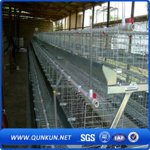 Best Design Durable Automatic H Type Battery Layer Chicken Cage pictures & photos