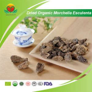 Manufacture Supplier Dried Organic Morchella Esculenta pictures & photos