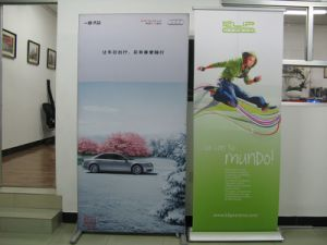 Good Quality Hot Sell Advertising Display Roll up Banner pictures & photos