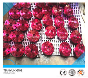 PT Inspecting Forged Stainless Steel Weld Neck Flange pictures & photos