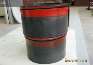 Welcome Customized Rubber Skirt Board, Conveyor Skirting Board, PU Skirting Board pictures & photos