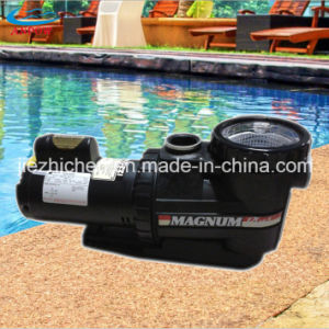 Hot Sale Endless Electric Swimming Pool Pump with Pre-Filter and DC Motor for Water Circulation