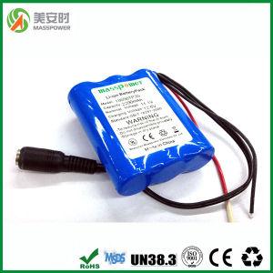 Hot Sales 12V 2200mAh Lithium Ion Battery Pack
