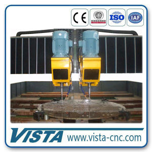 CNC Plate Drilling Machine (DM5000/2B) pictures & photos