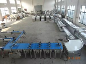 Zp-420 Pillow Type Automatic Horizontal Packing Machine for Mooncake Cake pictures & photos
