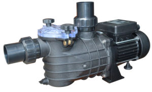 High Flow Rate Water Swimming Pool Pump pictures & photos