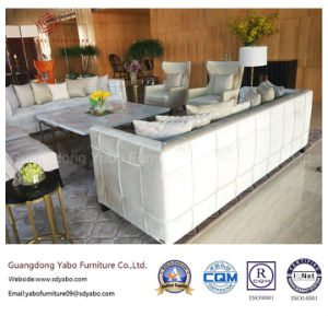 Modern Hotel Furniture for Hospitality Living Room Set (DR-01) pictures & photos