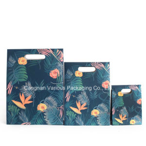 Printed Paper Bag for Gift, Birthday Party Packaging pictures & photos
