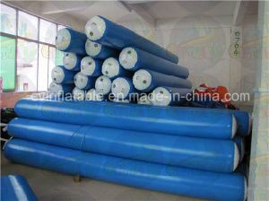 Guangzhou Manufacture Inflatable Water Park Game for Sale pictures & photos