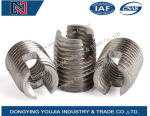 Stainless Steel Slotted Thread Insert pictures & photos