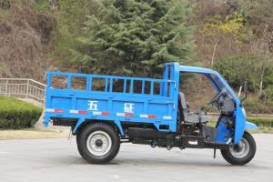 Diesel Right Hand Drive Waw Chinese Three Wheel Truck for Sale pictures & photos
