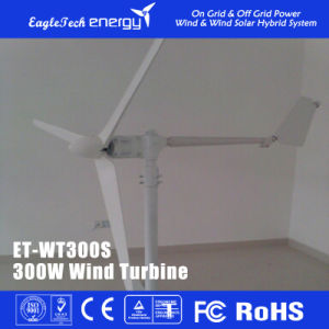 300W Solar Hybrid Streetlight Wind Power System Wind Driven Generator Wind Mill pictures & photos