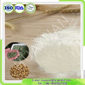 Hot Sale Industrial Collagen, Protein for Animal Feed pictures & photos
