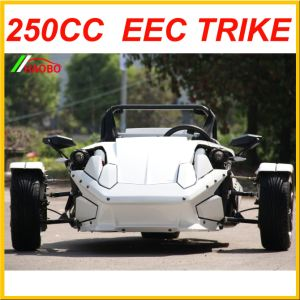 The Trike Roadster Ztr 250cc EEC Approved pictures & photos