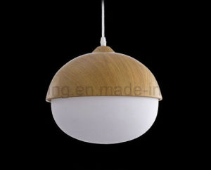 Indoor Chandelier Pendant Lamp Decorative Ceiling Lighting pictures & photos