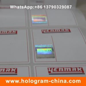 Custom Security Hologram Hot Stamping Sticker pictures & photos