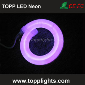 Neon Wire LED Light Rope Flexible Electroluminescent Lighting pictures & photos