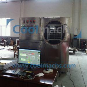 Pilot Freeze Dryer/Lab Use Vacuum Freeze Dryer/Mini Lyophilizer pictures & photos