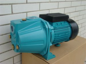 Jet 100s 1HP Self-Priming Garden Water Pump