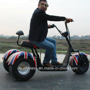 3 Fat Tire Harley Scooter Motorycle Bike of Tricycle pictures & photos