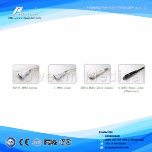 Portable Ultrasound Machine/Cardiac/Ob/Vascular Cheap 3D/4D Laptop Ultrasound Scanner pictures & photos