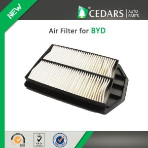 China Auto Parts Quality Supplier Air Filter for Byd pictures & photos