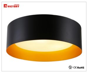 Waterproof Modern Simple Round Ceiling Surface Mount LED Light pictures & photos