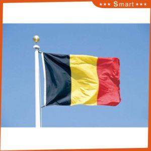 Custom Waterproof and Sunproof National Flag Chad National Flag pictures & photos